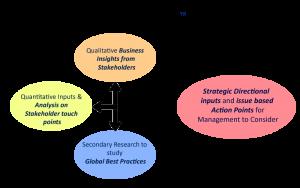Grassroots-RootedInsights-Model
